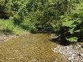 Der natürliche Lauf der Wiggere im Wiggerewald bei Wolhuse