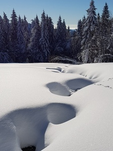 Sonne und Schnee, der perfekte Tag