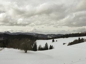Die Hügellandschaft im südlichen Schwarzwald